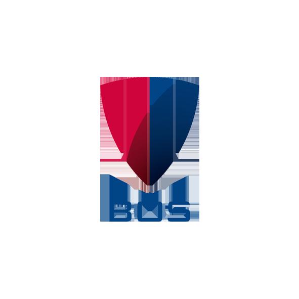 3SloghipartnerBOS